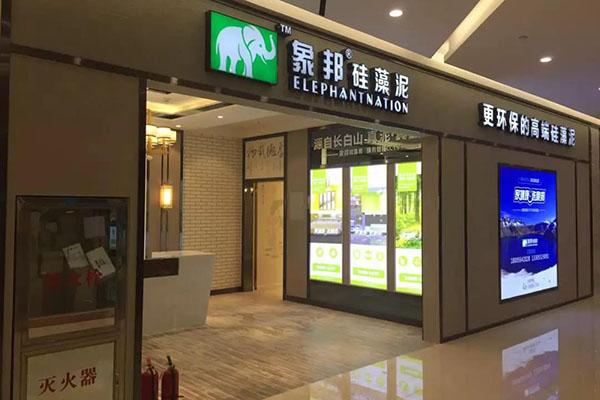 安庆市硅藻泥加盟