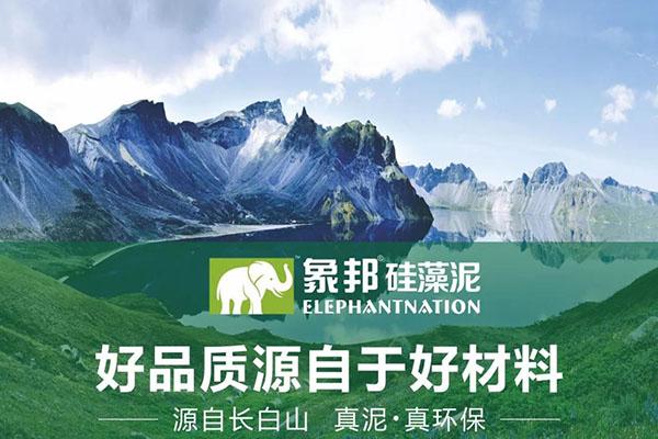 安庆怀宁县硅藻泥加盟