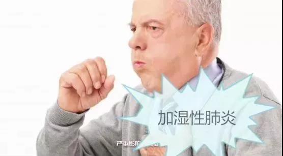 加湿性肺炎