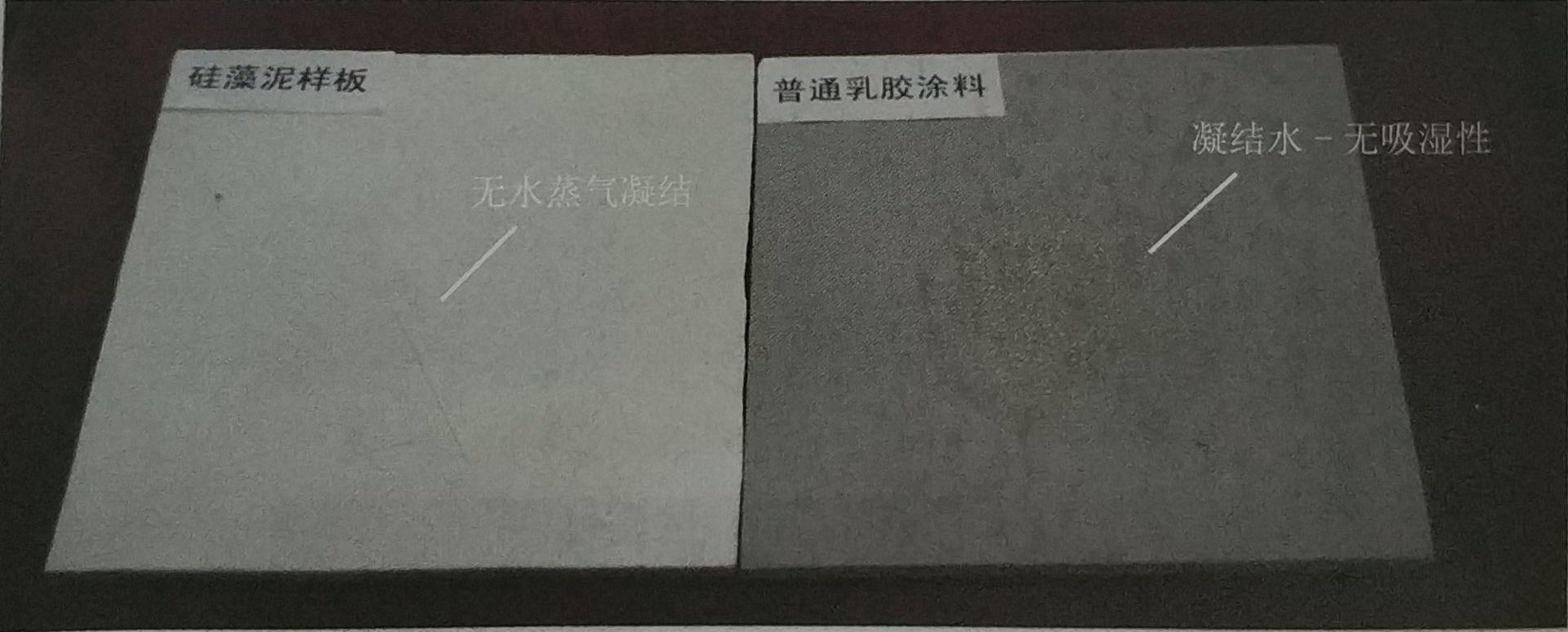 1min后硅藻泥样板和普通乳胶漆表面水汽凝结比较