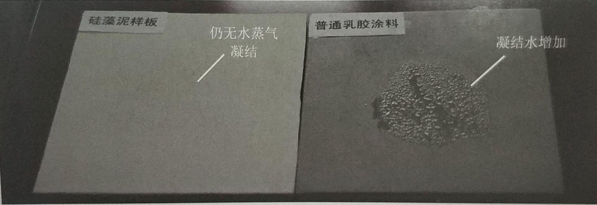 2min后硅藻泥样板和普通乳胶漆表面水汽凝结比较