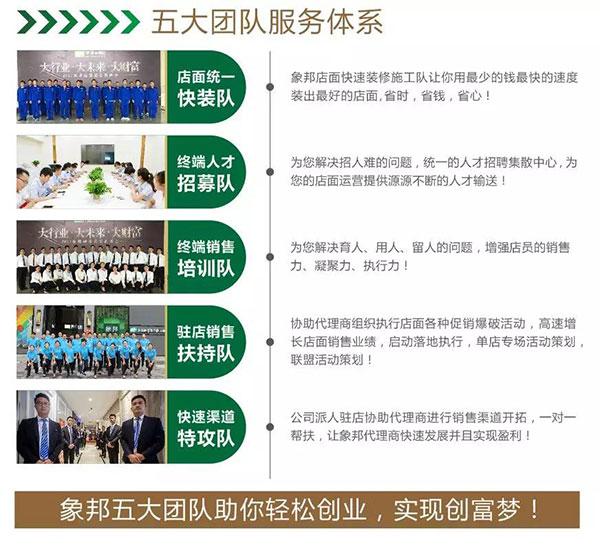 五大团队服务体系