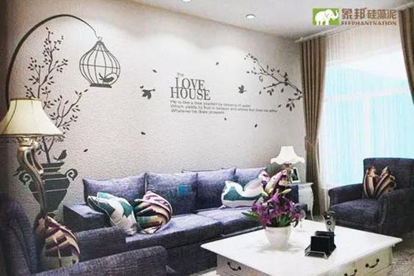 使用硅藻泥做背景墙的五大优势