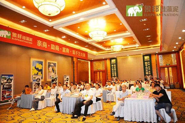 宿州泗县硅藻泥加盟代理