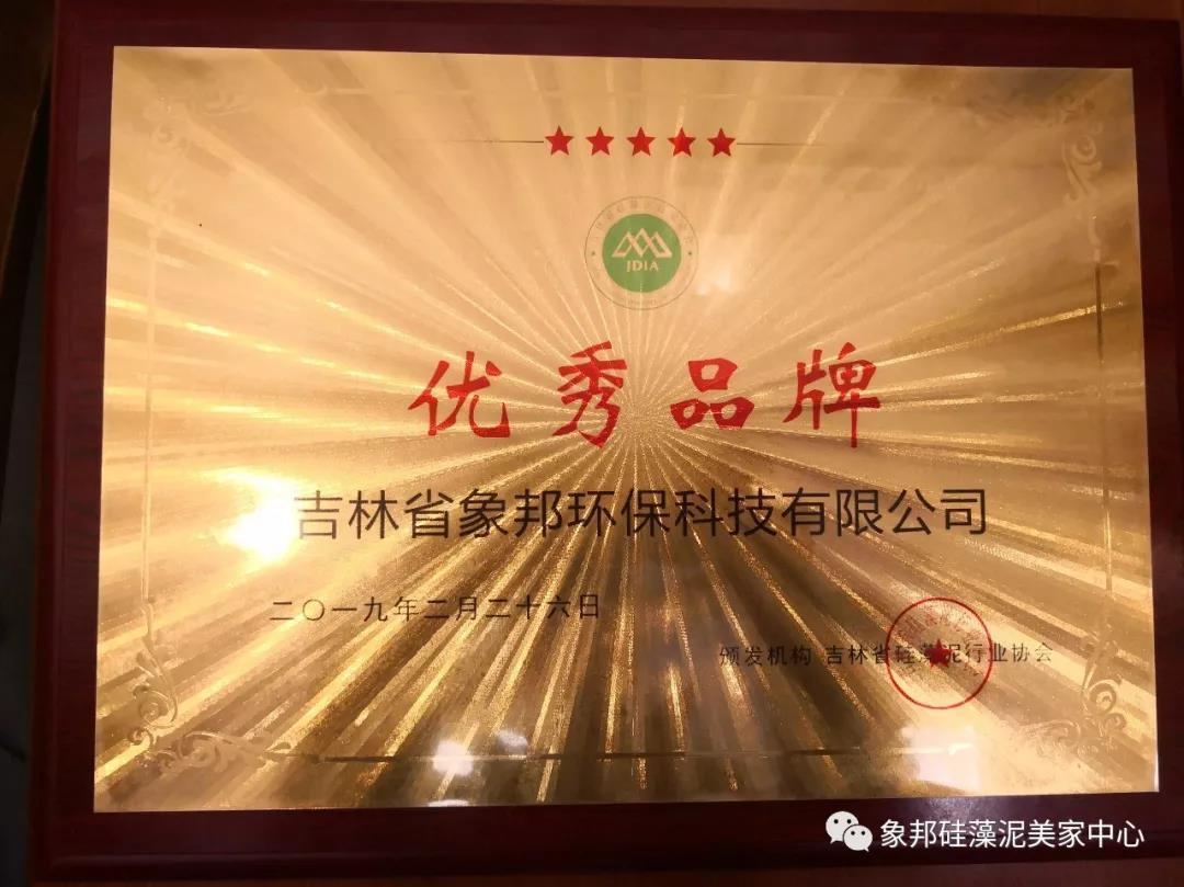 硅藻泥行业协会优秀品牌奖