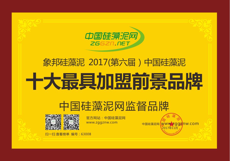 中国硅藻泥十大最具加盟前景品牌