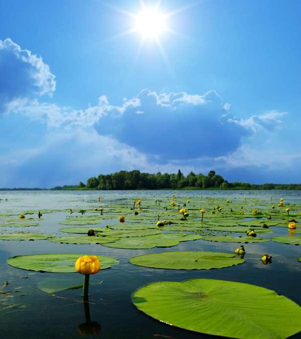 合肥100平方用硅藻泥多少斤相关图片