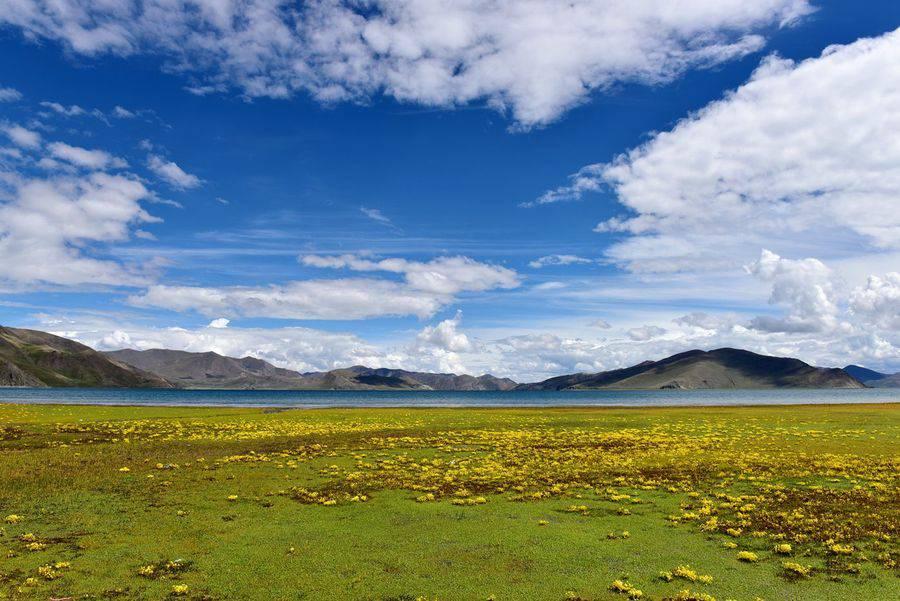 合肥硅藻泥平均多少钱一平相关图片