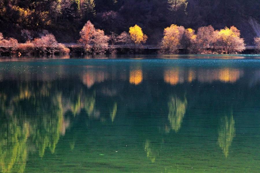 合肥硅藻泥做工多少钱一平方相关图片
