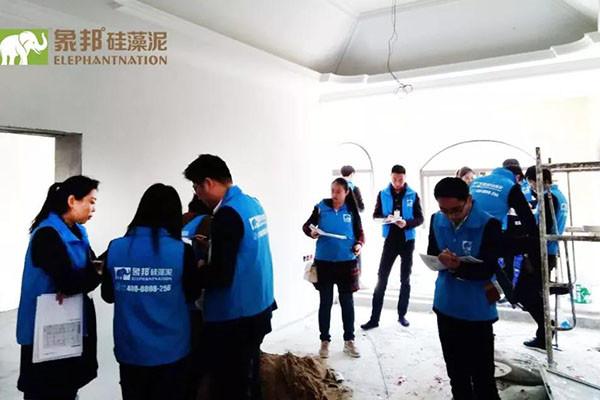 西安临潼区硅藻泥厂家批发价格