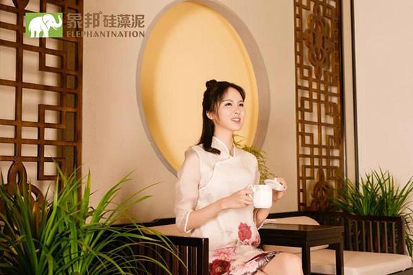 上海崇明县硅藻泥厂家批发价格